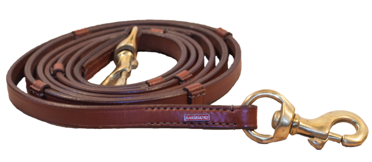 Leather reins